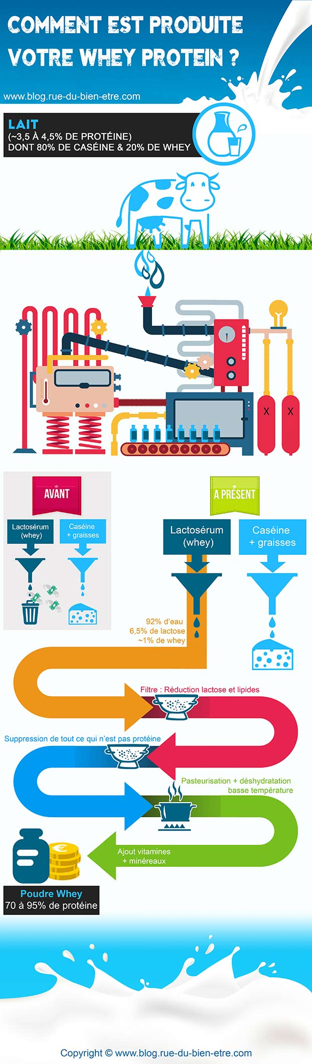 infographie whey proteine