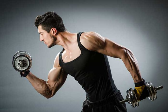 machine musculation biceps