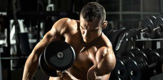 exercices muscler biceps triceps
