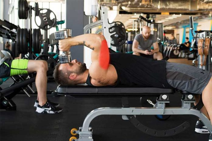 programme musculation triceps enormes